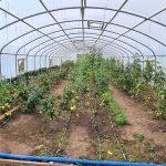 STOREX greenhouse frame